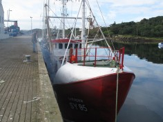 fish boat polution